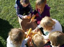 Cjelodnevni izleti za djecu vrtićke i školske dobi